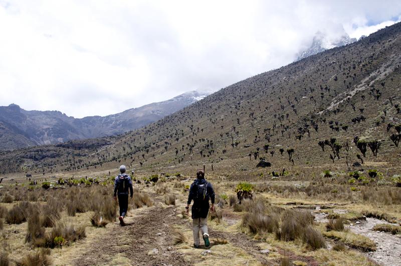 登上路上。右上方的是Mt. Kenya山頂,海拔5,199米。